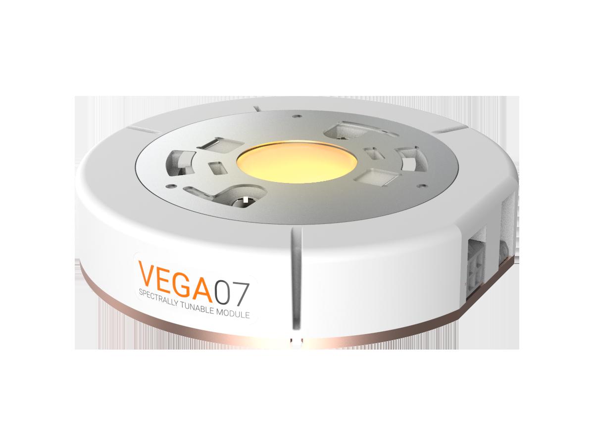 Vega 07